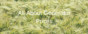 generator prices guide